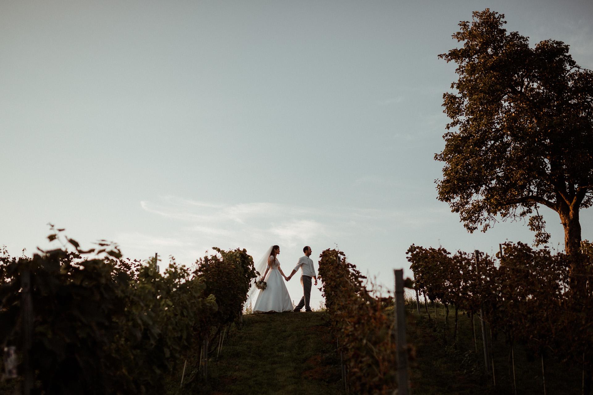 svadba-foto
